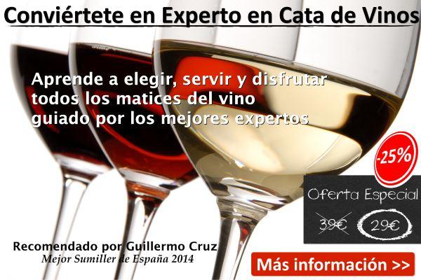 Curso Online de Cata de Vinos. Oferta especial muy limitada por 29 euros